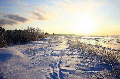 Природа Северодвинска
