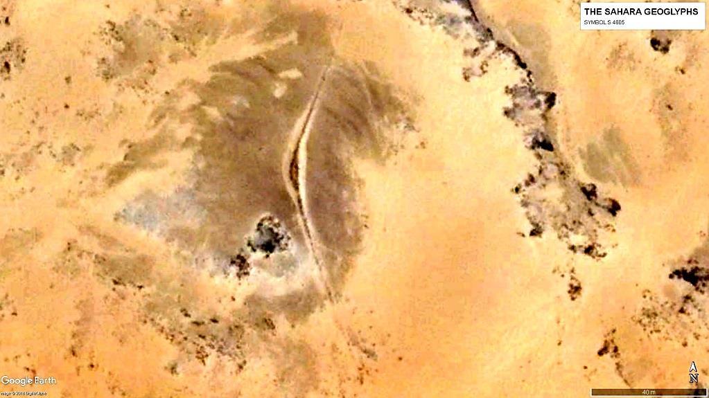 Геоглиф S 4605. Периметр более 250 м
