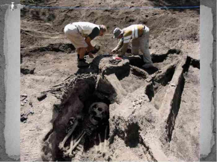 огромные скелеты фото