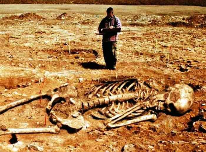 скелет великана найден