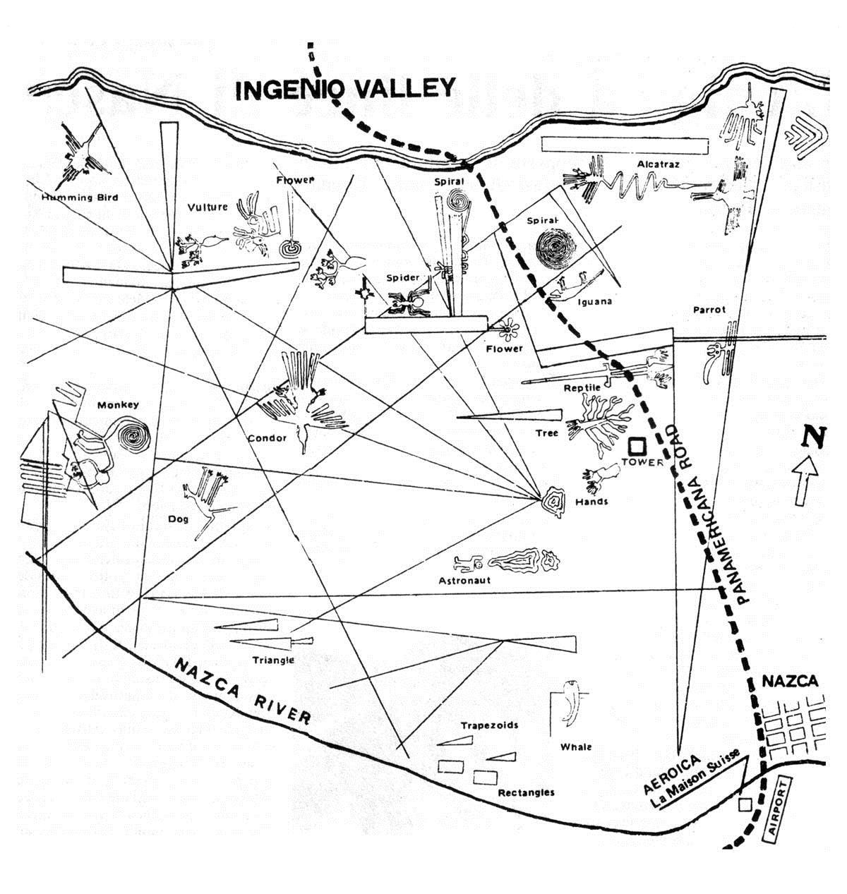 рисунки на плато Наска