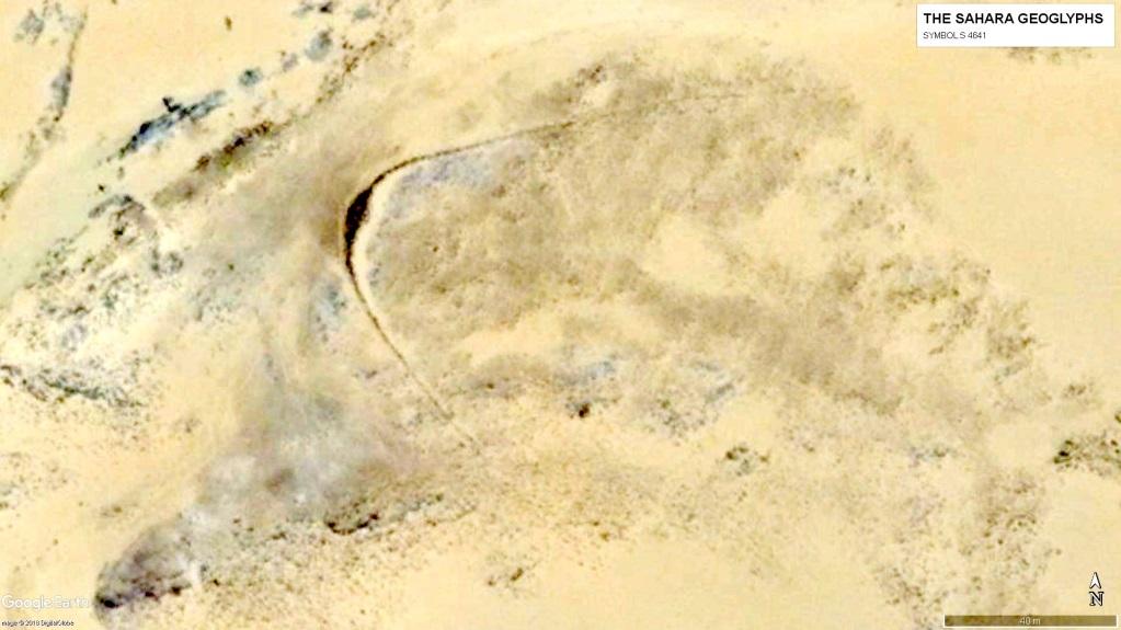 Скопление  геоглифов. Геоглиф S 4641. Длина около 200 м