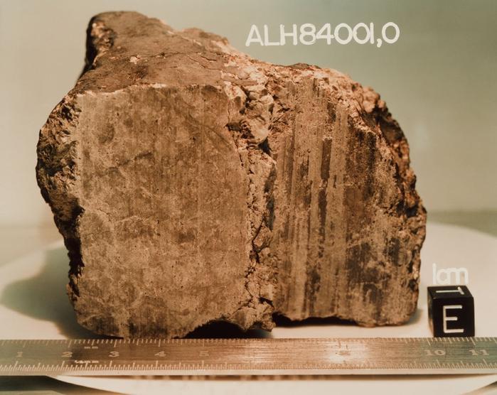метеорит ALH 84001